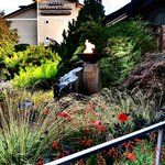 The garden and the Bellwether Hotel