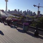 Dwontown Seattle from rooftop deck