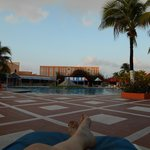 The view from my chaise lounge by the pool