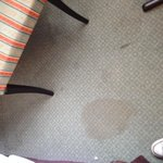 Nice carpet stains