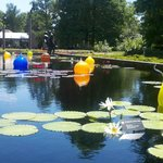 Blown glass adds whimsical art to pool!