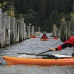 ‪Kayak Tillamook Scheduled Tours‬