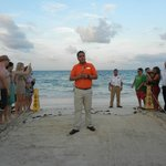 Yearly sea turtle release