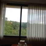 Foto de Comfort Inn-Pocono Mountain