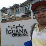 Afuera del hotel Iguana Crossing