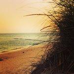 The splendor of just one of the seashore beaches- at Coastguard Beach post Summer insanity. Go a