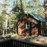 The cabin next door (typical Wildyrie cabin)