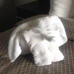 My elephant towel to welcome us!