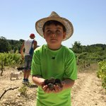 Our 6 year old in Johann's hat with a handful of truffles.