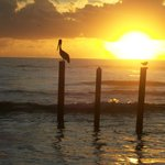 Sun rise walk