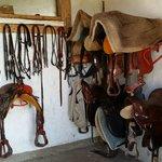 Photo de La Valle dei Cavalli