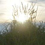 Sunrise in the dunes of Casa Marina