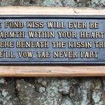 Kissing tree sign