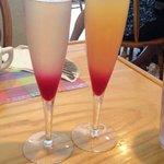 Prickly pear & tropical mimosas
