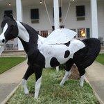 Horse in front of Days Inn Wilbur