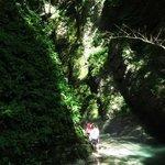 Kozjak Waterfalls