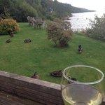 Drink overlooking the loch