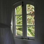 View from bedroom window in Mango Garden Cottage