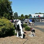 Margerate River - Cow Statue