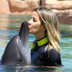 Dolphin bay this is LIlly