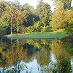 De Kongelige Botaniske Haver i Melbourne