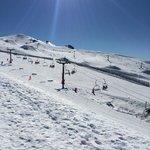 Cardrona Ski Fields