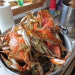 Crabs were excellent but didn't like being told one price then ringing up as more.