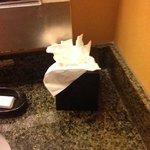 lightly used tissues. no biggie