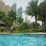 Adult pool surroundings