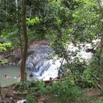 Foto de Pulai Waterfall