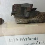 Shoes used in the wetlands- sorry for reflection