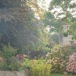 Magnificent Gardens