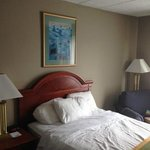 BEST WESTERN Inn at Hunt's Landing Foto