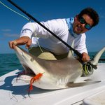 fly fishing for shark with Shallow Tails Guide Service