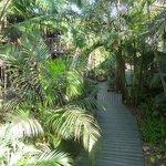 Jungle achtig, uniek en goed begaanbaar