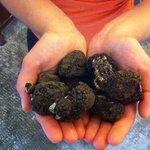 Tartufi! - The region is famous for truffles