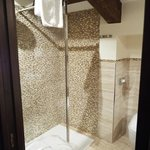 Room 615, Villa Igea, newly remodeled large shower