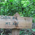 Ms Kat cabin