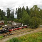 The train at BC Forest Discovery centre