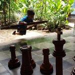 Balançoire et jeux d'échec