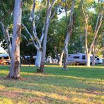 Shaded Camping Ground