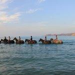Centre equestre St Francois en Balagne - Day Tours