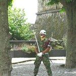 Forte Guard