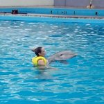 nado individual