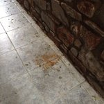 The vomit outside our door after one night