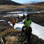 Iceland Horse Tours