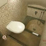 2nd Bathroom ...shower grotto