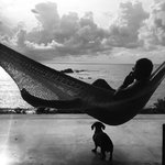 """Hammock overlooking the Pacific Ocean on the """"porch."""""""