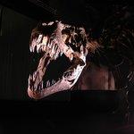 Reproducción de dinosaurio