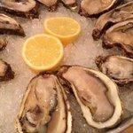 Excellent Fresh Dutch oysters. Yummy!!